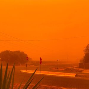 "TOPSHOT - This handout picture taken and released courtesy of Petra Johansson on November 21, 2019 shows the sky turning orange from dust storms caused by bushfires in Mildura in Victoria state. - The fire danger was elevated across wider swathes of southern Australia on November 21, with residents warned to avoid at-risk areas as smoke from bushfires choked Sydney and other major cities. (Photo by Handout / Courtesy of Petra Johansson / AFP) / RESTRICTED TO EDITORIAL USE - MANDATORY CREDIT ""AFP PHOTO / Courtesy of Petra Johansson"" - NO MARKETING NO ADVERTISING CAMPAIGNS - DISTRIBUTED AS A SERVICE TO CLIENTS --- NO ARCHIVES --- (Photo by HANDOUT/Courtesy of Petra Johansson/AFP via Getty Images)"